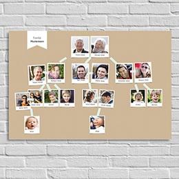 Poster - Stammbaum - 0