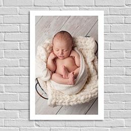 Poster - Foto Porträt - 0