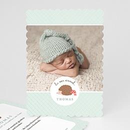 Babykarten für Jungen - Der kleine Igel - 0