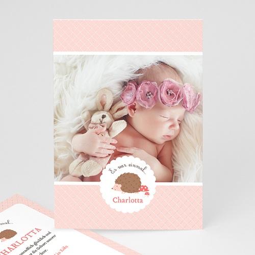 Geburtskarten für Mädchen - Igelin 49194