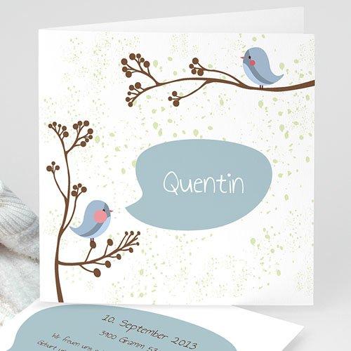 Babykarten für Jungen - Vogelgezwitscher 13060