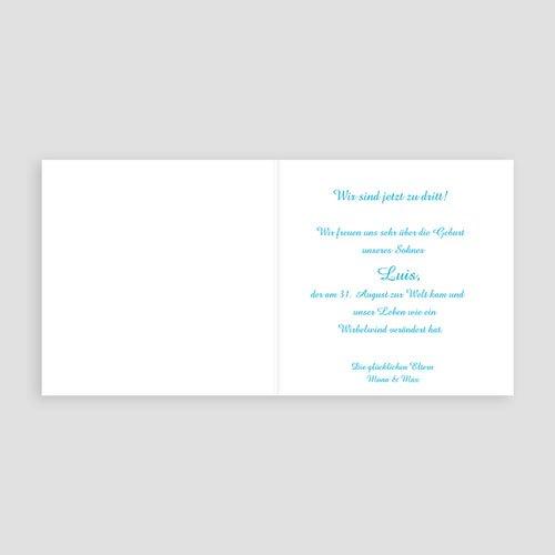 Babykarten für Jungen - Luis 16829 preview