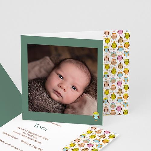 Babykarten für Jungen - Eule 2234