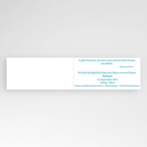 Babykarten für Jungen - Alexander 2865 preview