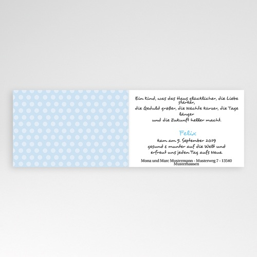 Babykarten für Jungen - Karl 2887 test