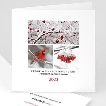 Weihnachtskarten - Wolle - 1