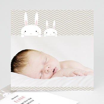Geburtskarten für Mädchen - 2 Hasen - 0