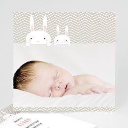 Karten Geburt 2 Hasen