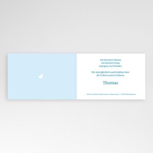 Babykarten für Jungen - Vichy Karos blau 4393 test