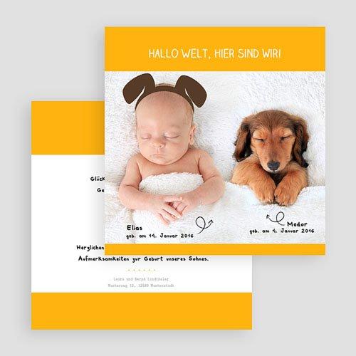 Babykarten für Jungen - Wuff 44314 preview