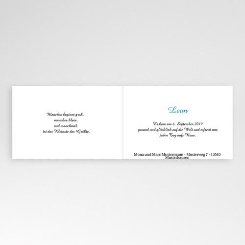 Babykarten für Jungen - Felix 4455 preview