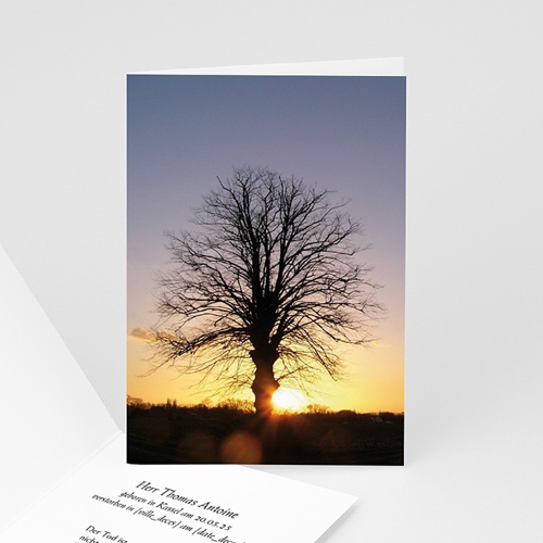 Trauer Danksagung weltlich - Sonnenstrahlen 4564