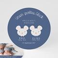 Babykarten für Zwillinge gestalten - Zwillingsmäuse 47190 test