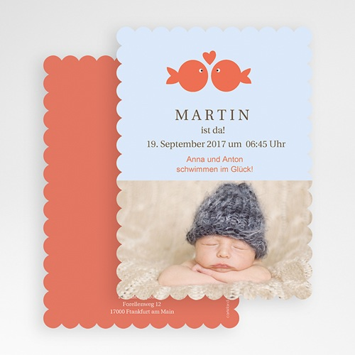 Babykarten für Jungen - Fisch 47960 test