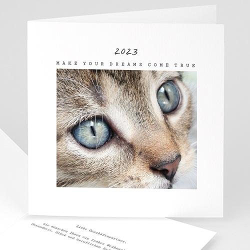 Weihnachtskarten - Kätzchen 49985