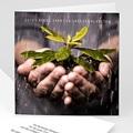 Geschäftliche Weihnachtskarten Eco