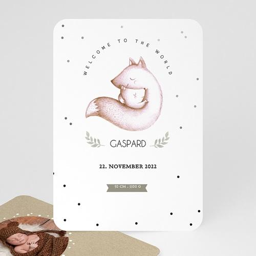 Babykarten für Jungen - Fuchsbaby 51978