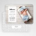 Babykarten für Jungen - Mit Liebe 53077 test