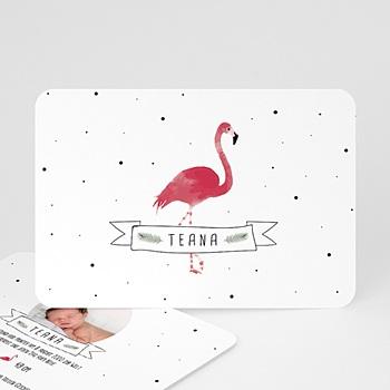 Geburtskarten für Mädchen - Flamingo exotisch - 0