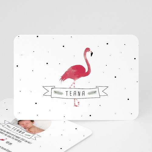 Geburtskarten für Mädchen Flamingo exotisch