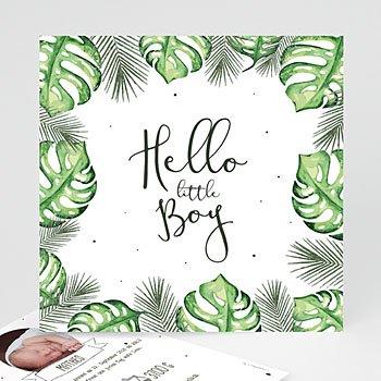 Babykarten für Jungen - Plante tropicale - 0