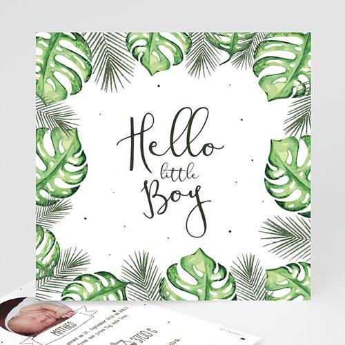 Babykarten für Jungen - Tropische Pflanzen 53617