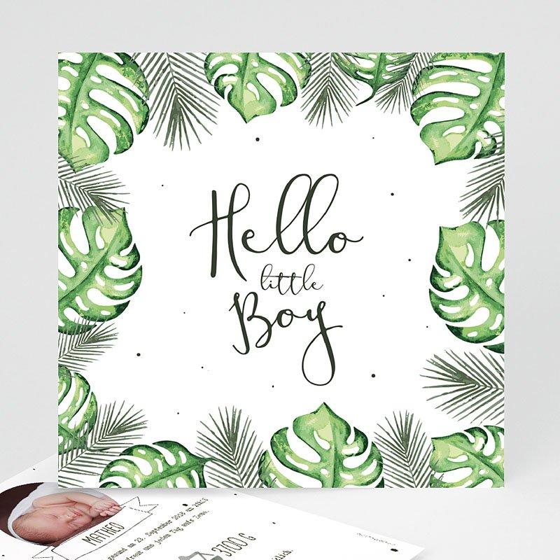Geburtskarten für Jungen Tropische Pflanzen