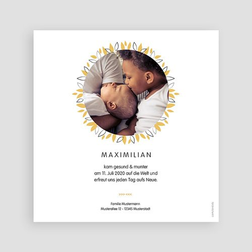 Babykarten für Jungen - Koala blau 53825 preview