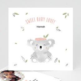 Karten Geburt Koala Baby