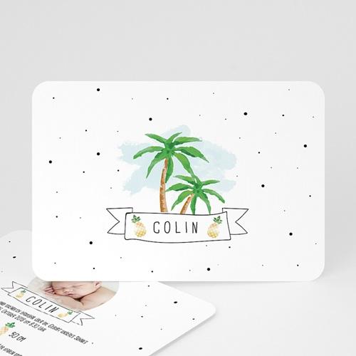Babykarten für Jungen - Palmen & Ananas 53842