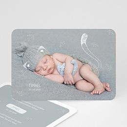 Babykarten für Jungen - Kleine Katze - 0