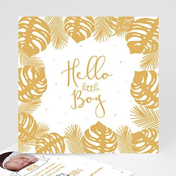 Babykarten für Jungen - Tropisches Flair - 0