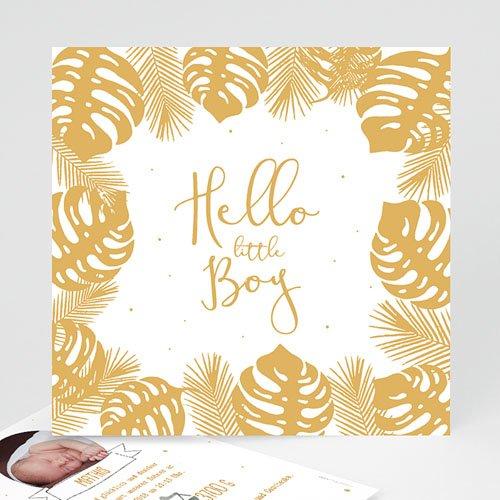 Babykarten für Jungen - Tropisches Flair 54730