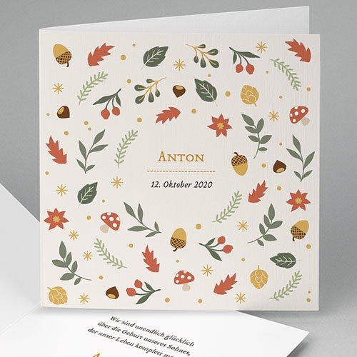 Babykarten für Jungen - Herbst 55580