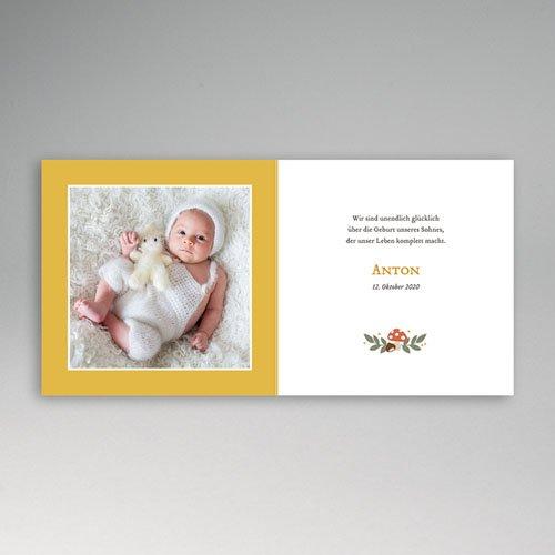 Babykarten für Jungen - Herbst 55581 preview