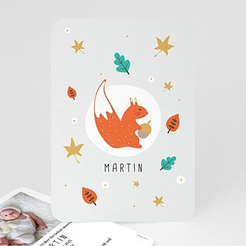 Babykarten für Jungen - Kleines Erdhörnchen - 0