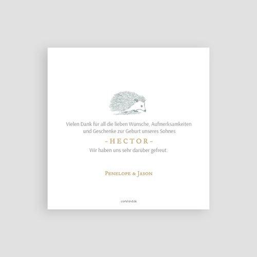 Dankeskarten Geburt Jungen - Goldigel 63280 thumb