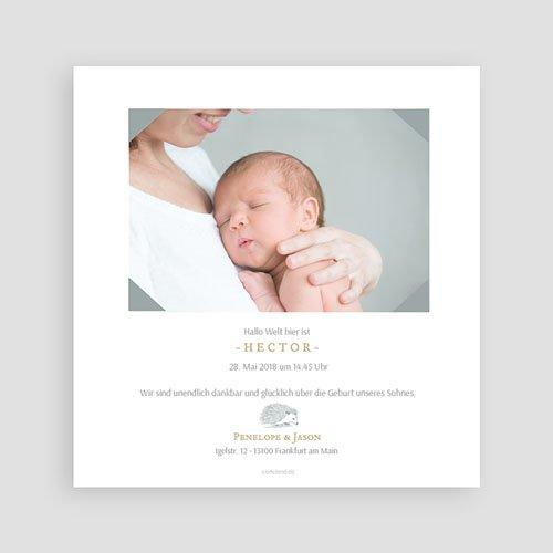 Geburtskarten mit Tieren Goldigel pas cher