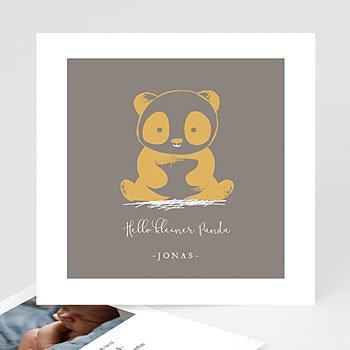 Geburtskarten für Jungen - Little Panda - 0