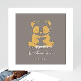 Geburtskarten für Jungen Little Panda