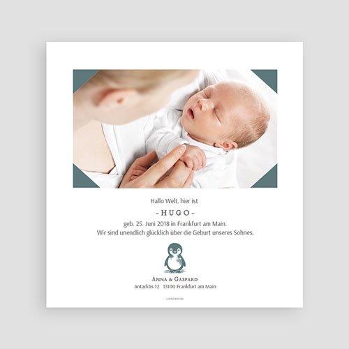 Geburtskarten mit Tieren Kleiner Pinguin pas cher