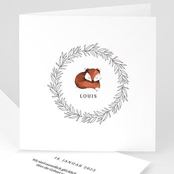 Foto-Babykarten gestalten Rotfuchs