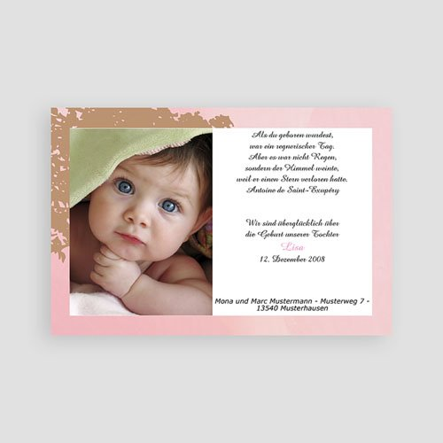 Archivieren - Beige-Rose 8201 preview