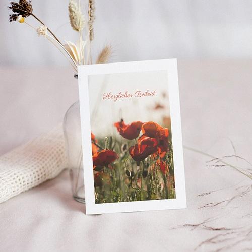 Kondolenzkarten Beileidskarte zerbrechliche Mohnblüten 10 cm x 14 cm