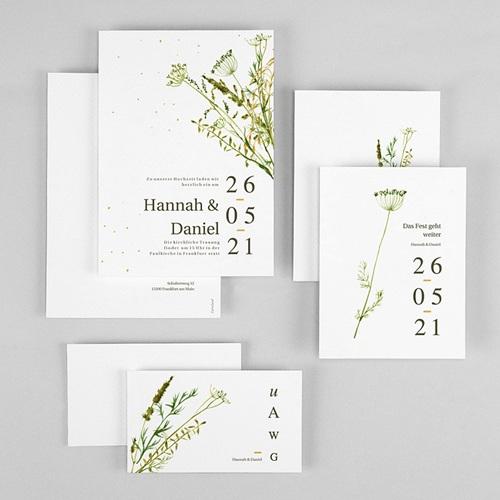 Rustikale Hochzeitseinladungen Möhrenblüten, ländliches Thema, Goldstreifen gratuit