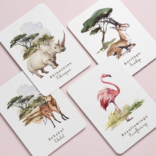 Extras Tierwelt in Afrika