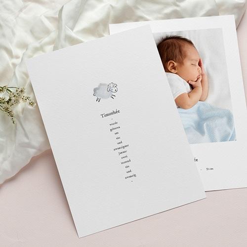Geburtskarten für Jungen Süße Miniatur, blau-graues Schäflein & Foto pas cher