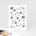 Dankeskarten Geburt für Geschwister Herbarium mit Kornblumen, Porträt