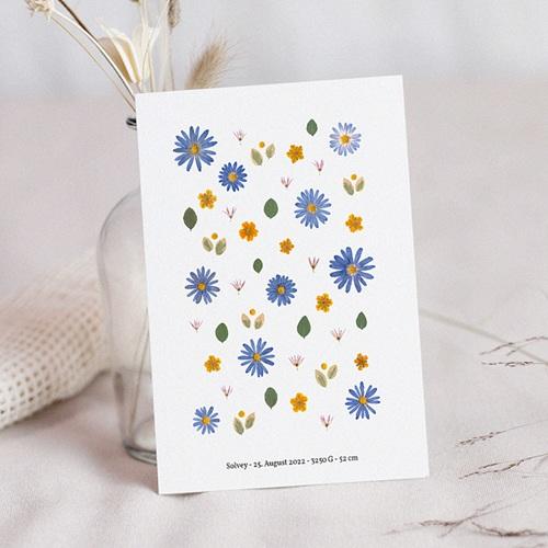 Geburtskarten Herbarium, Griechische Windblume, 12 x 16.7 cm